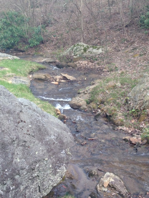Bold creek in the picnic area