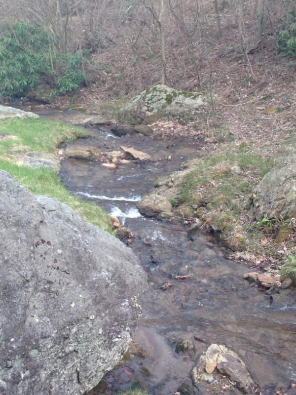 Bold creek in the picnic area