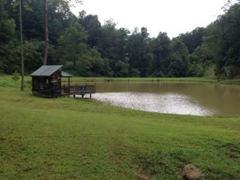 Lower Pond Within Walking Distance of the Cabin